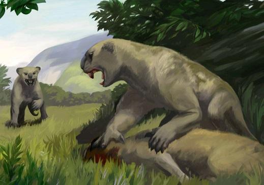 Вовсе не изменения климата стали причиной вымирания австралийской фауны.