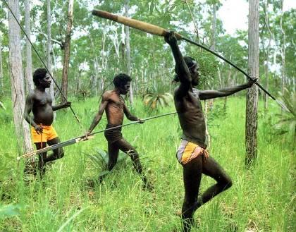 http://avstralianature.ru/img/pages/Проблемы экологии - виноваты аборигены?