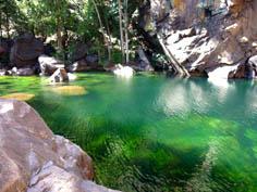 http://avstralianature.ru/img/pages/Национальный парк Какаду